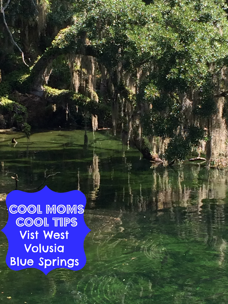 Visit West Volusia – A Frugal Florida Vacation of Endless Beauty: Blue Spring State Park – Travel