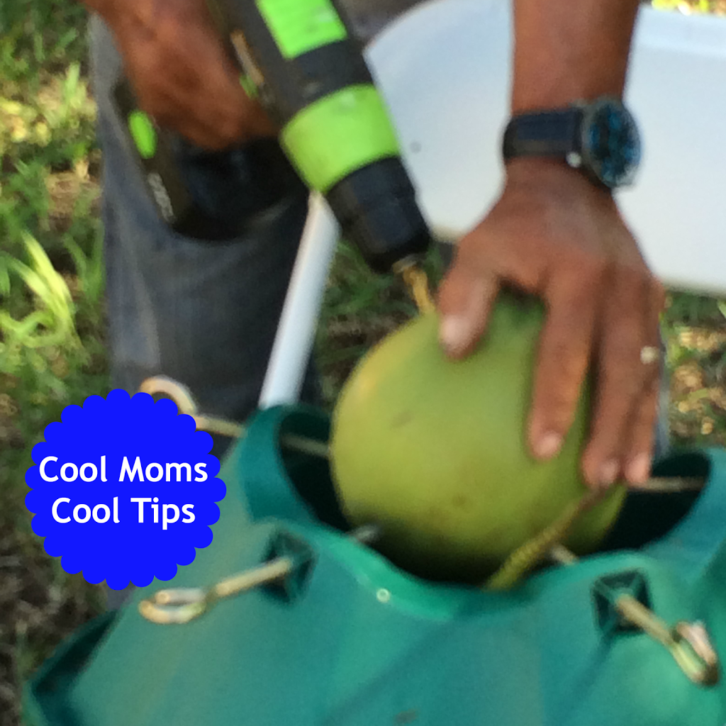 cool moms cool tips summer DIY natural coconut water coconuts drilling