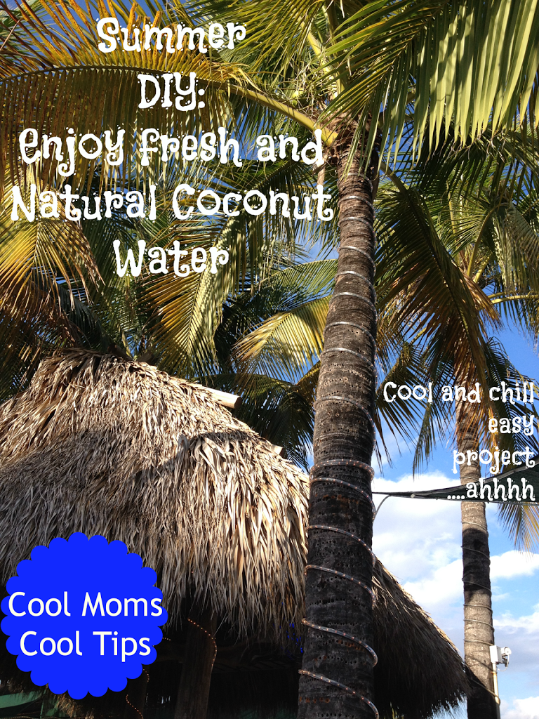 cool moms cool tips summer DIY natural coconut water palm trees