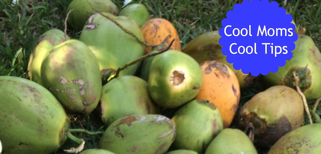 cool moms cool tips summer DIY natural coconut water coconuts