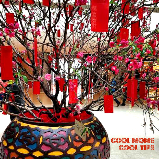 Celebrate Lunar or Chinese New Year With The Kids: Part 1-The Background