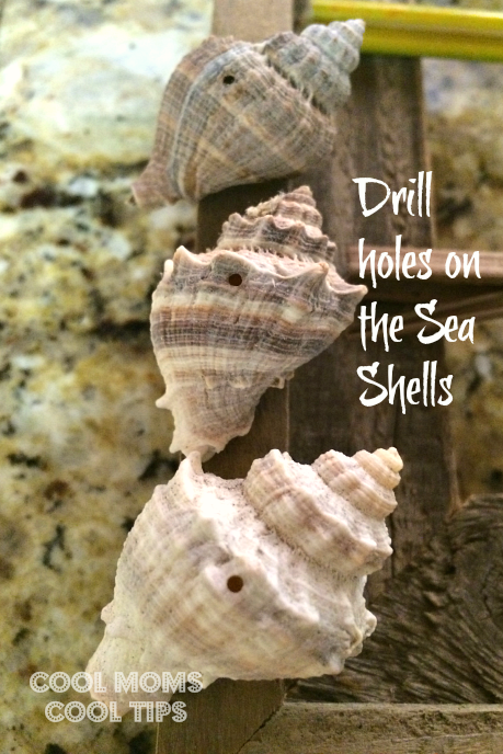 drilled-sea-shells-cool-moms-cool-tips