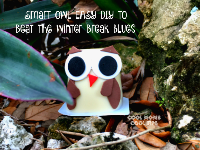 Tips To Beat Winter Break Blues Owl Deocrated Pudding Cup DIY- cool-moms-cool-tips