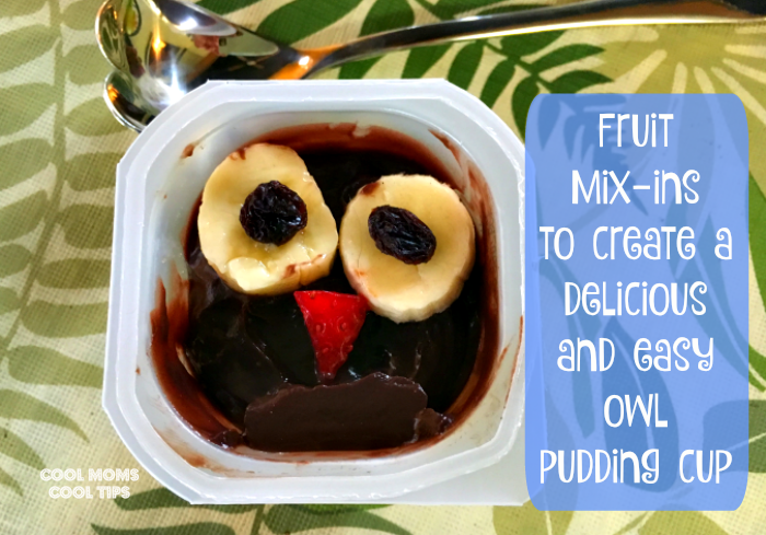 Tips To Beat Winter Break Blues edible Owl Deocrated Pudding Cup DIY with fruits- cool-moms-cool-tips
