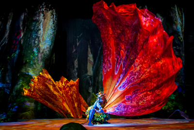 Cirque du Soleil Presents Toruk The First Flight