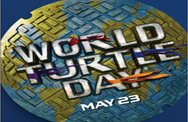 Celebrating World Turtle Day with a Teenage Mutant Ninja Turtles Movie Giveaway