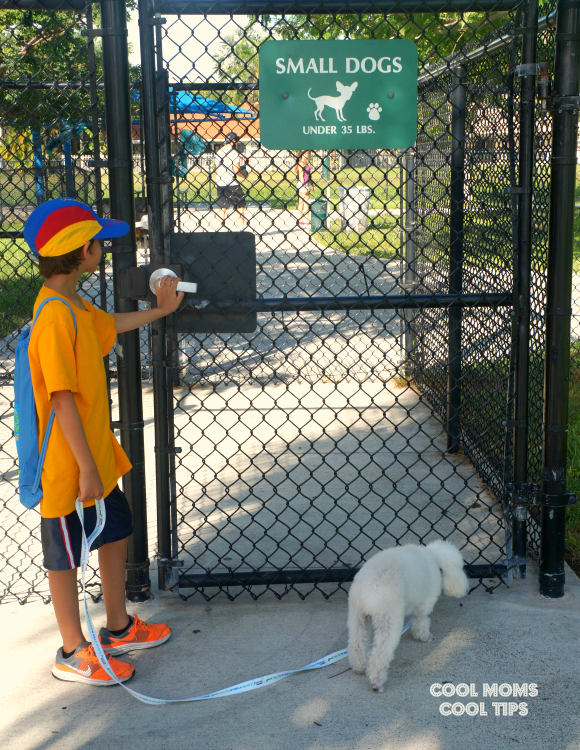 dog park entrance cool moms cool tips #friendsofbeneful #ad