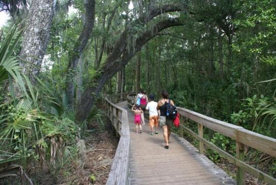 Blue Spring State Park Board Walk