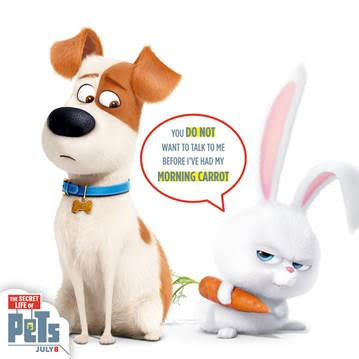 The Secret Life of Pets Review #THESECRETLIFEOFPETS