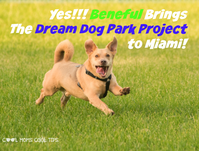 Miami Welcomes Beneful and the Dream Dog Park Project #FriendsOfBeneful