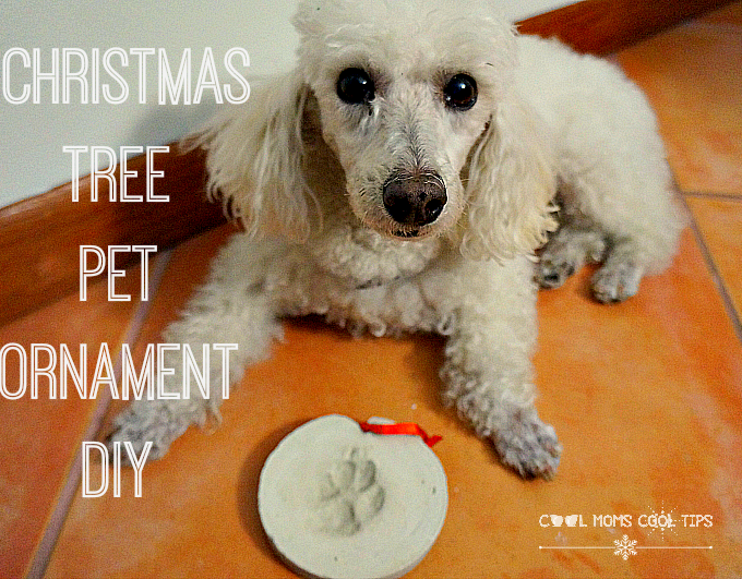 Christmas Tree Pet Ornament DIY #FriendsofBeneful #happyholidays #giveaway