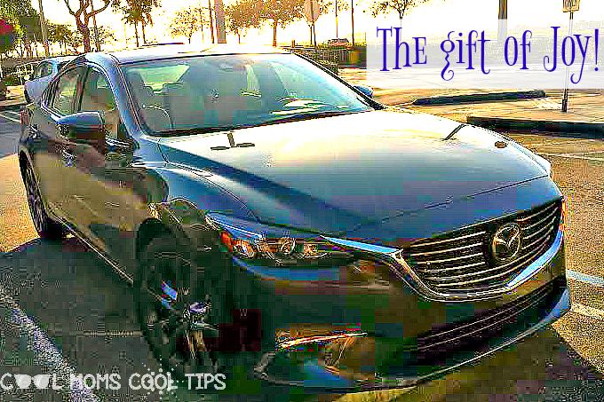 Seven Item New Car Gift Pack Idea