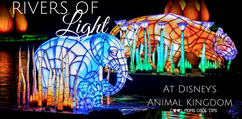The New Rivers of Light At Animal Kingdom #DisneySMMC