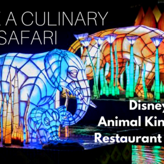 animal kingdom restaurant guide (1)
