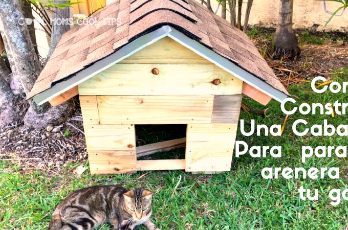 Como Construir Una Cabaña Para Tu Gato
