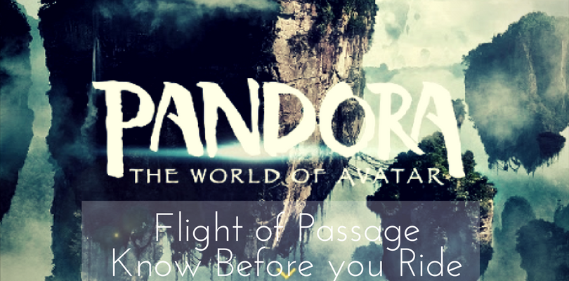 9 Things About Pandora Flight of Passage You Need to Know Before you Ride – World of Avatar