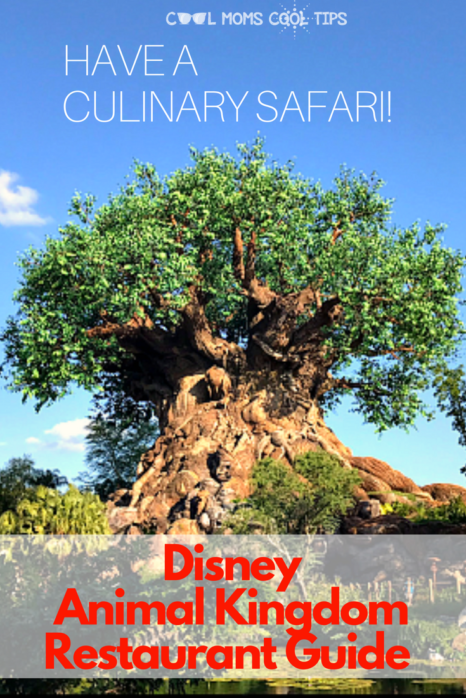 ready to visit animal kingdom? plan your meals like a pro with our disney animal kingdom restaurant guide