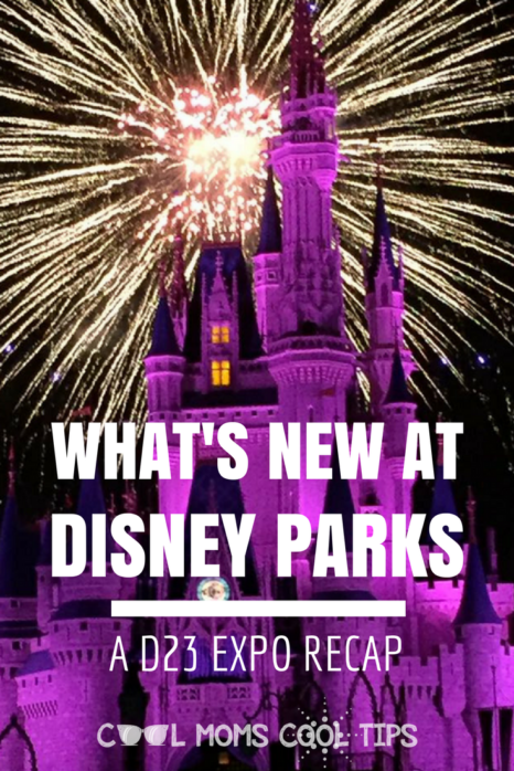 Dying to new about the new attractions and rides at Disney Parks? We have the latest details straight out of the D23 Expo for you!