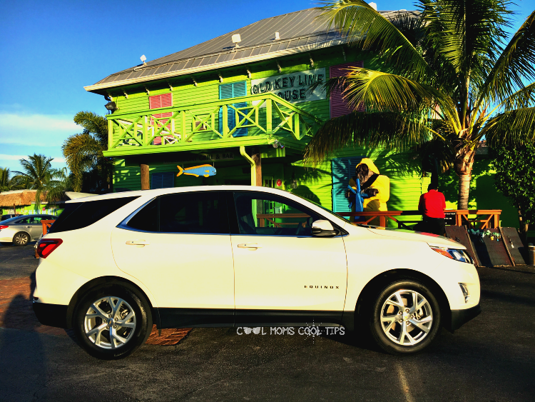 south florida lime green houses cool moms cool tips