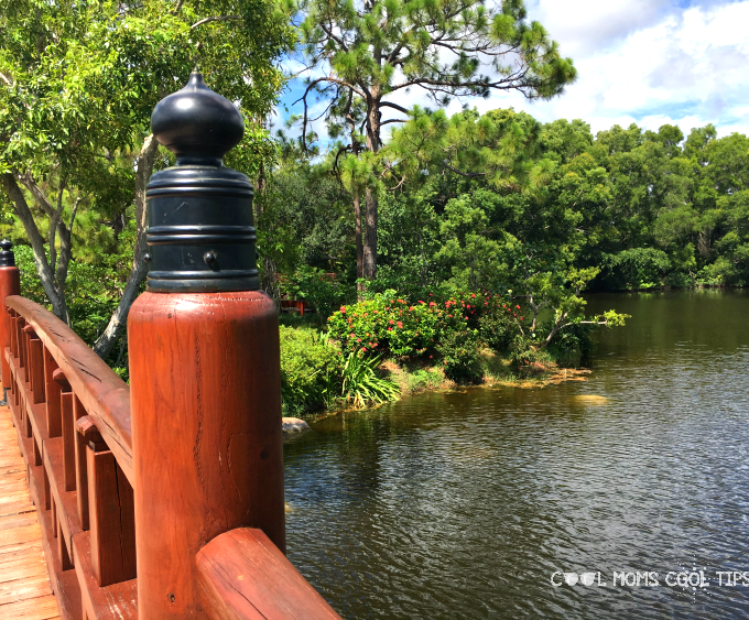 7 Things to Enjoy at The Morikami Museum and Gardens in South Florida.