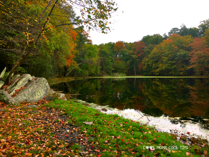 7 Must-dos to Discover Fall Family Fun In The Poconos