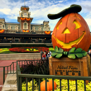Mickey's Not So Scary Halloween Party Tips and Tricks to get all the treats!