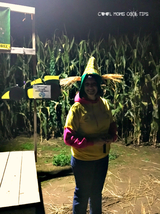corn maze host cool moms cool tips