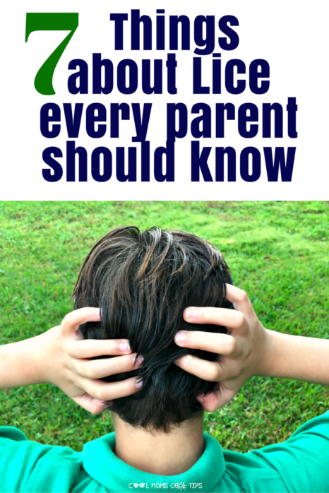 Trying to eliminate lice in your household? Consider these seven thing to keep lice at bay