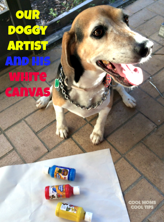 the-doggie-artist-cool-moms-cool-tips #amorbeneful #ad