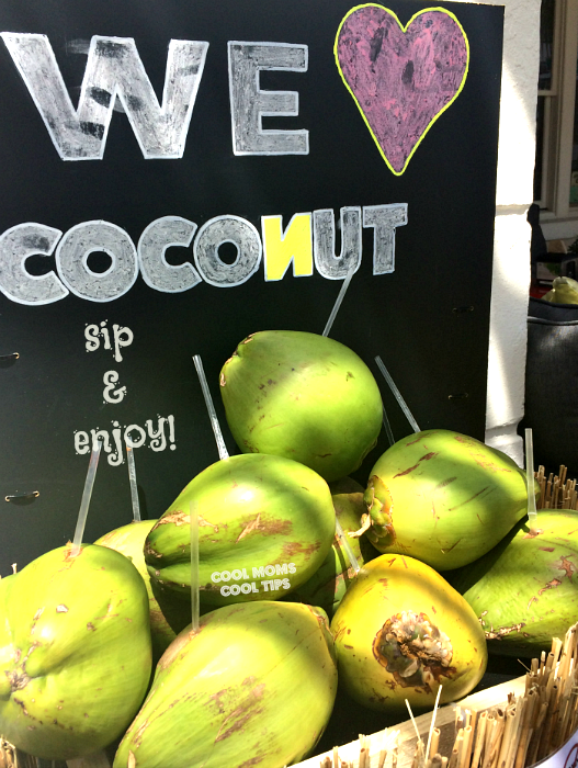 coconuts-to-enjoy-diy-project-cool-moms-cool-tips