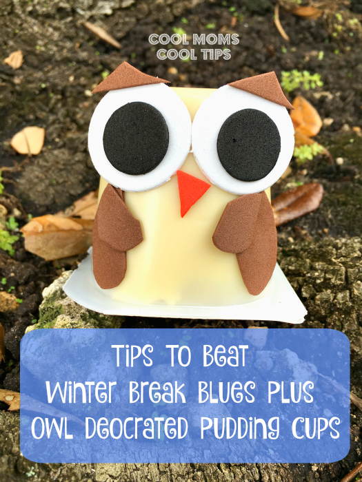Tips To Beat Winter Break Blues and Owl Deocrated Pudding Cups- cool-moms-cool-tips