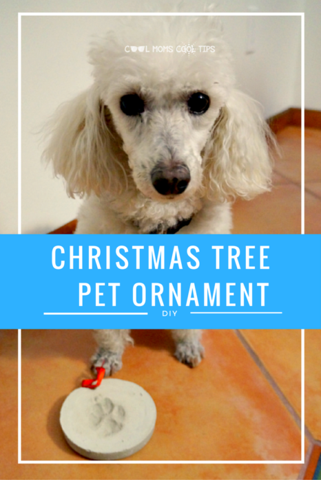 Adorable DIY to do wit hyour dog for your chritmas tree this year that is easy and memorable. Ready to make your holiday pet decor with your furry baby?