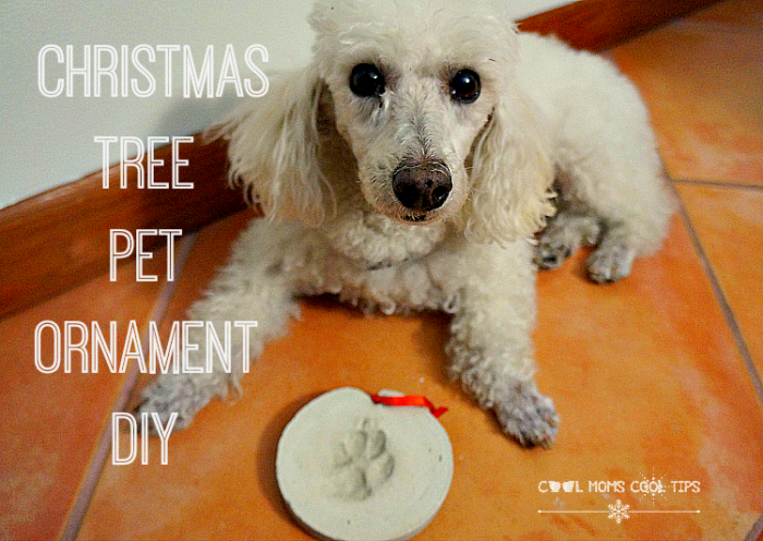 christmas tree pet ornament diy cool moms cool tips