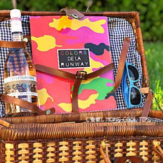 unique family picnic tips