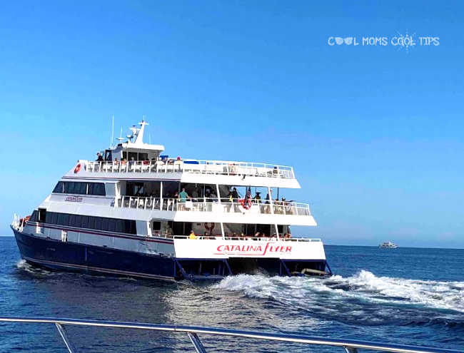 Two Day Guide To Catalina Island