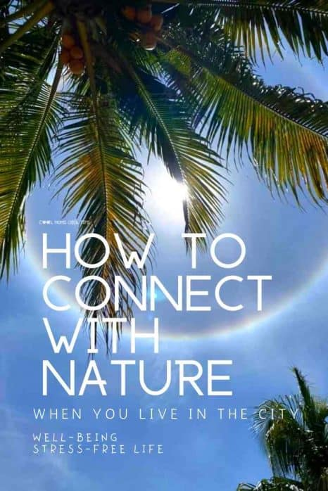 4-easy-ways-to-connect-with-nature