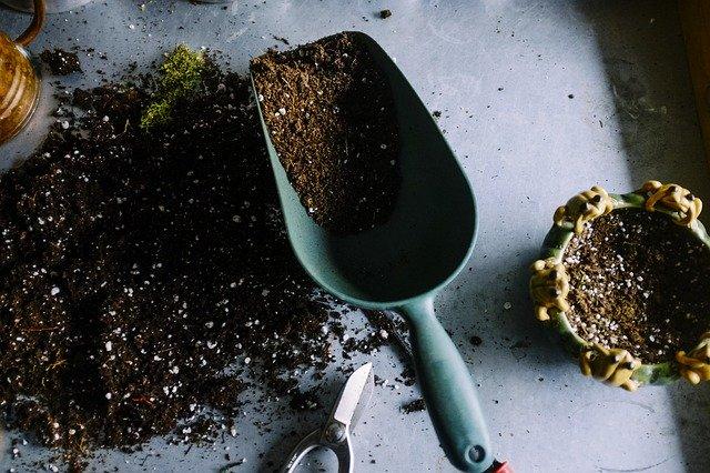 how to prepare a winter garden