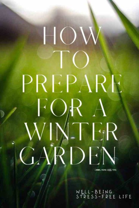 how to prepare for a winter garden-cool-moms-cool-tips